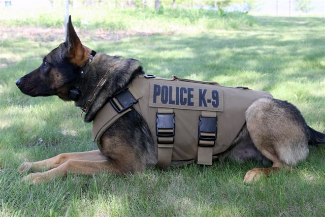 Police K9 Training & Consulting