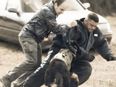 Tank Mosley Police K-9 Decoy Instructor